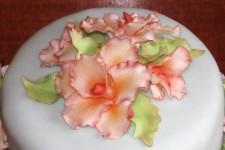 16_193_orchidej1
